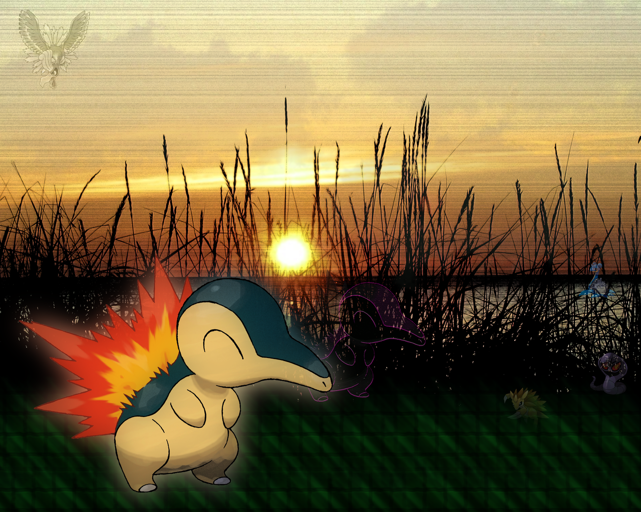 Wallpapers - Poliwager Cyndaquil Wallpaper